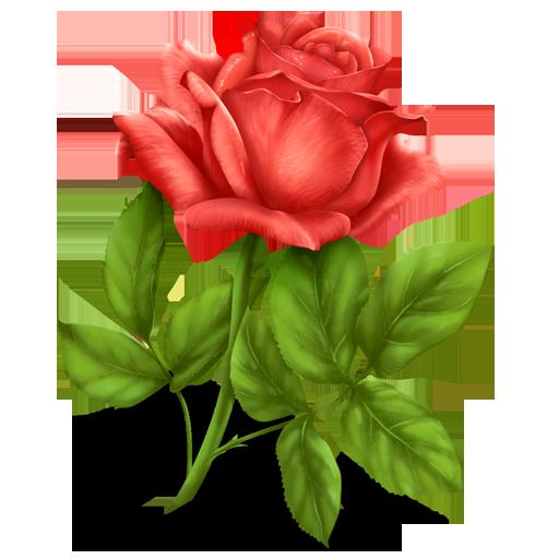 Иконка цветок - цветы, роза