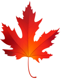 Осенний кленовый лист - осень, листья, клён