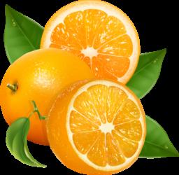 Апельсины - цитрусовые, фрукты, апельсины