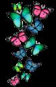 Бабочки на прозрачном фоне