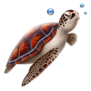 Иконка черепаха