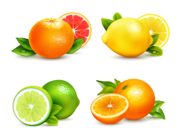 Цитрусы - цитрусовые, лимон, лайм, апельсин