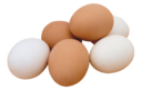 Куриные яйца без фона