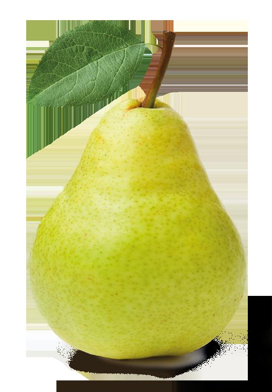 Груша в png - фрукты, груша