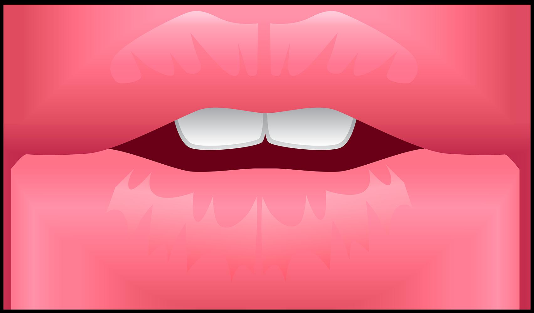 Губы - части тела, губы