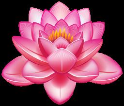 Картинка цветок лотоса - цветы, растения, лотос