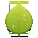 Иконка зелёный лист