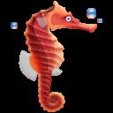 Иконка морской конек - морской конек