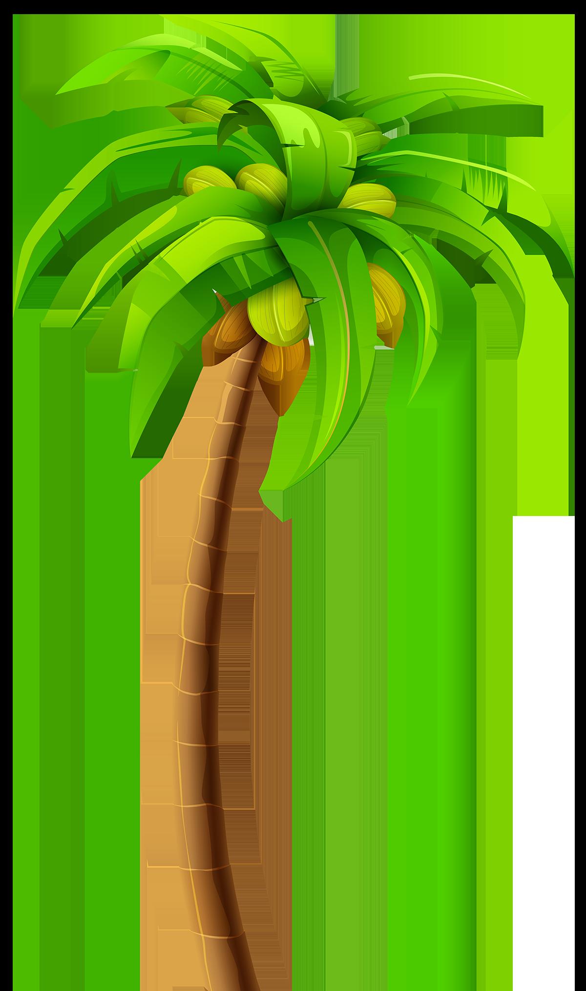 Пальма - туризм, растения, пальма, деревья