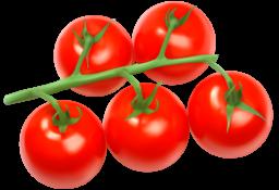 Помидоры png - томат, помидоры, овощи