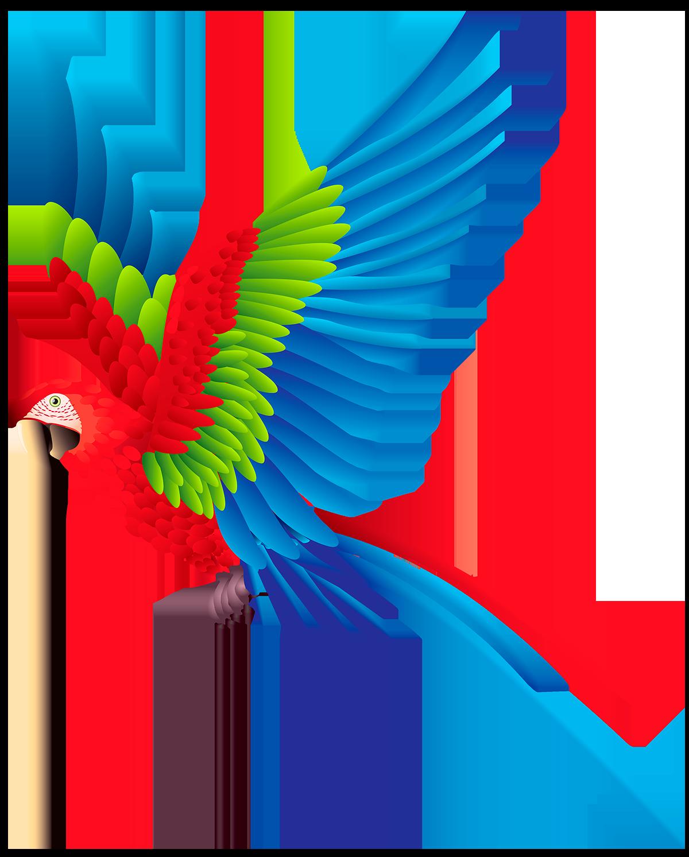 Попугай - попугай, животные, домашние животные
