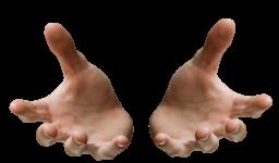 Протянутые руки - части тела, руки