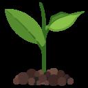 Иконка росток - росток, зелень