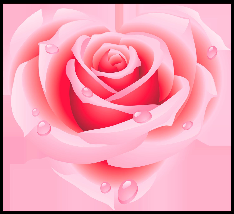Роза сердце - сердце, роза