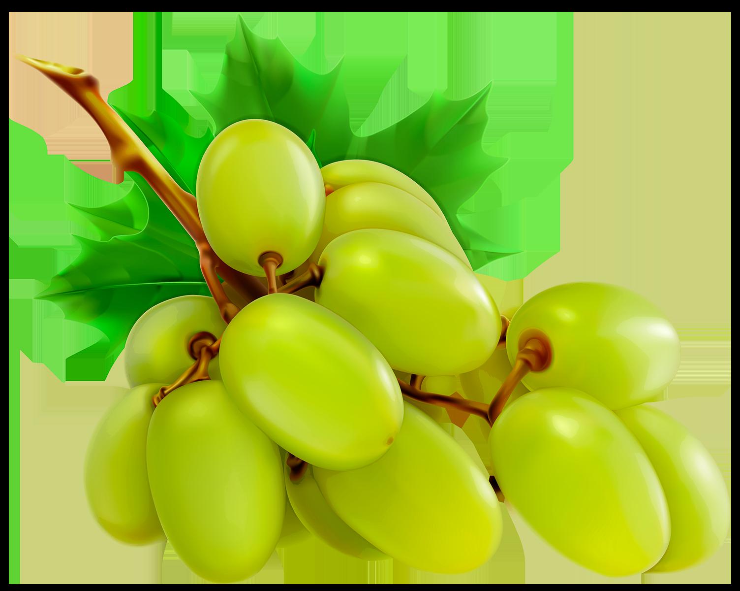 Виноград - ягоды, виноград