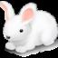 Иконка кролик